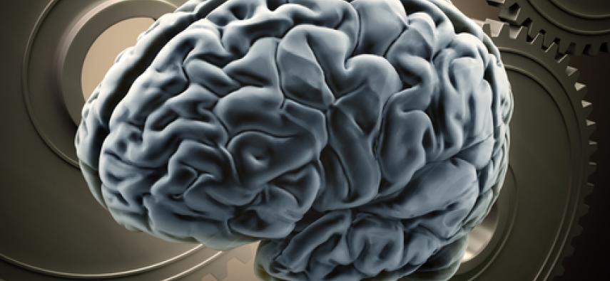 Ataksja rdzeniowo-móżdżkowa typu 2