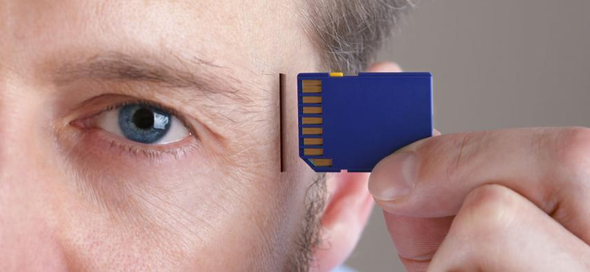 Acetylocholina - klucz do pamięci