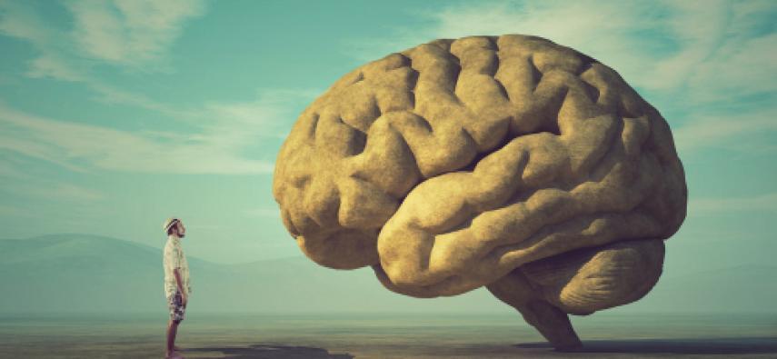 Duży mózg - duży problem: rzecz o podstępnej naturze glejaków