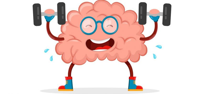 Jak kreatyna wpływa na funkcje poznawcze i mózg?